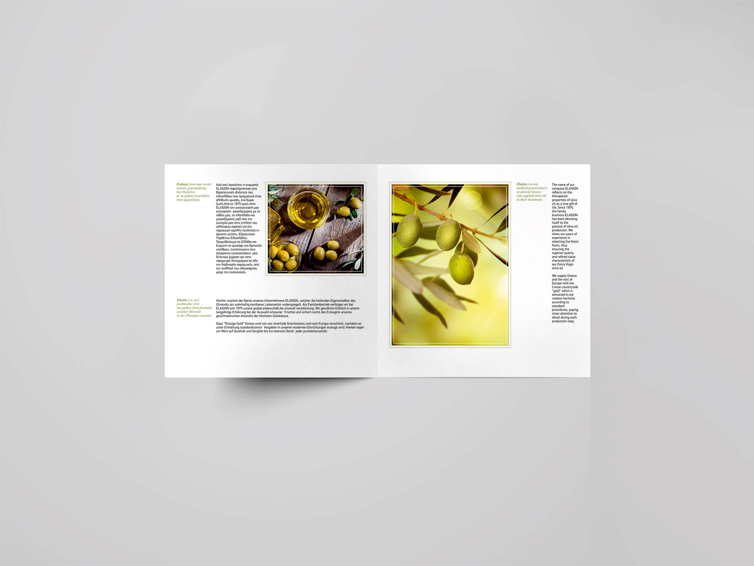 Elasion Brochure